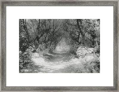 The Icknield Way Framed Print by Simon Marsden