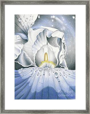 The Iris Universe Framed Print by Elizabeth Dobbs