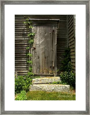 The Ivied Door Framed Print by Theresa Willingham