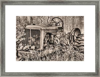 The Ivy League Bw Framed Print by JC Findley
