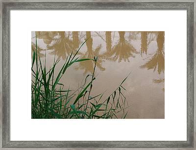 The Jordan River Framed Print by David George