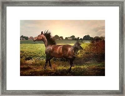The Joy Of Spring Framed Print by Dorota Kudyba