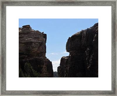 Framed Print featuring the photograph The Jump by Shawn Hughes