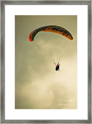 The Jumper Framed Print by Syed Aqueel