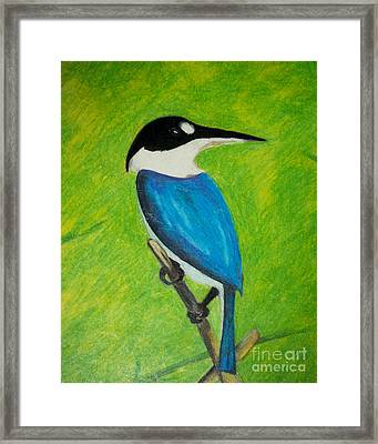 The King Fisher Framed Print