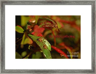 Framed Print featuring the photograph The Ladies Gathering by Vicki Ferrari