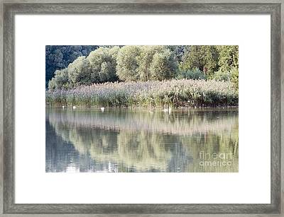 The Lake Reflection Framed Print by Odon Czintos