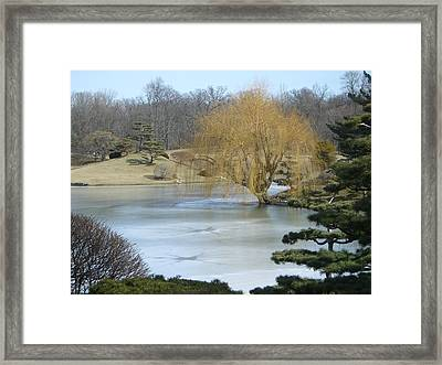 The Landscape In February Framed Print by Dragica Lukovic
