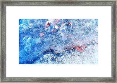 The Last Face Of The Winter Framed Print