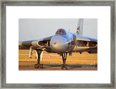 The Last Flight Of The Season 2012 Framed Print by Clare Scott