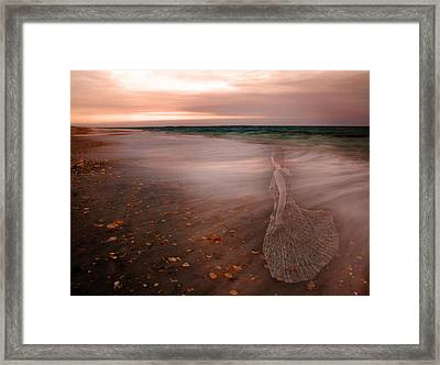 The Last Time I Saw Her Framed Print by Betsy Knapp