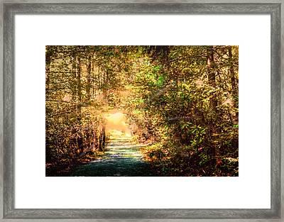 The Light Framed Print by Barry Jones