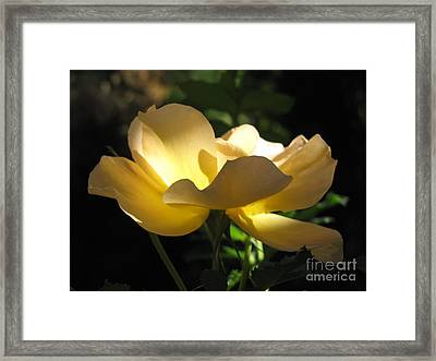 The Light Within Framed Print