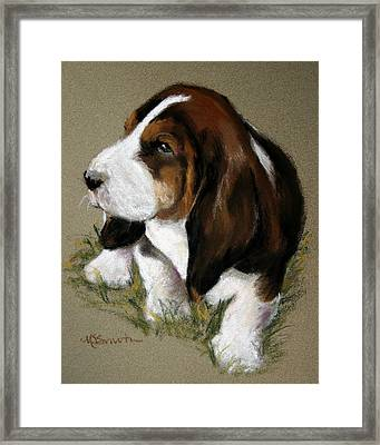 The Little Basset Framed Print by Mary Sparrow