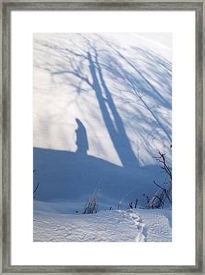 The Lone Path Taken Framed Print