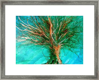 The Lone Tree Framed Print by Heather Matthews