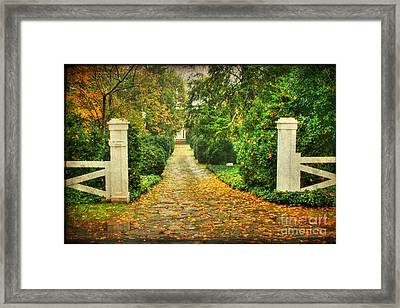 The Long Lonely Path Framed Print by Darren Fisher