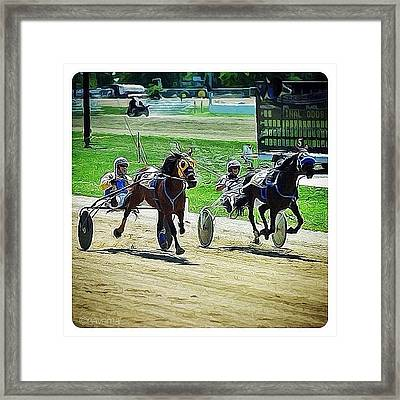 The Long Tail Filly & The Big Black Framed Print