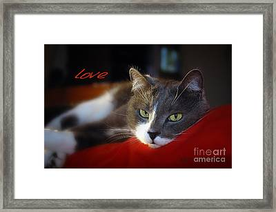 Framed Print featuring the photograph The Look Of Love by Vicki Ferrari