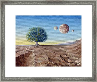 The Lorn Tree From Arboregal Framed Print