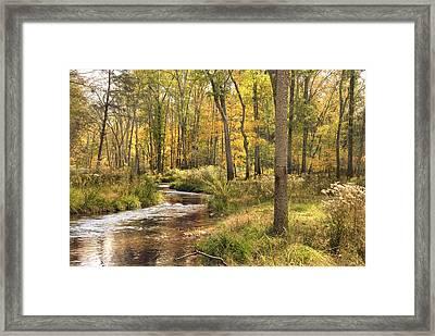 The Lost Creek Framed Print by Cindy Rubin