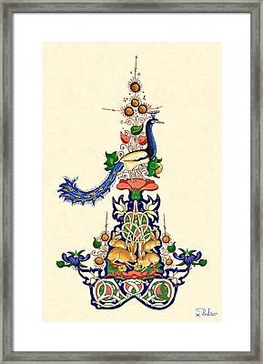 The Magnificent Peacock 2 Framed Print by Raffaella Lunelli