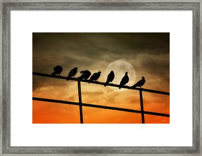 The Magnificent Seven Framed Print by Tom York Images