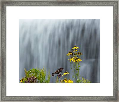 The Middle Falls II Framed Print by Neal Blizzard