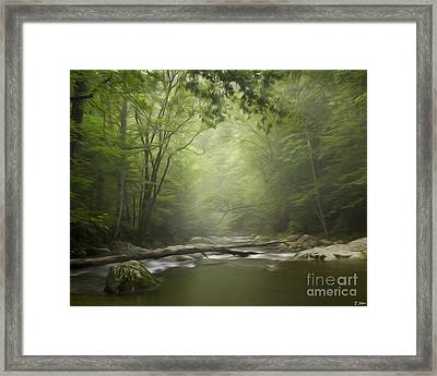 The Middle Prong River In Fog Framed Print by Smokey Mountain  Art