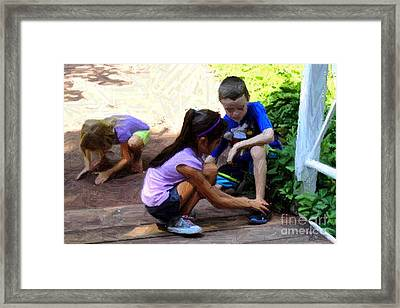The Mimic Framed Print by RL Rucker