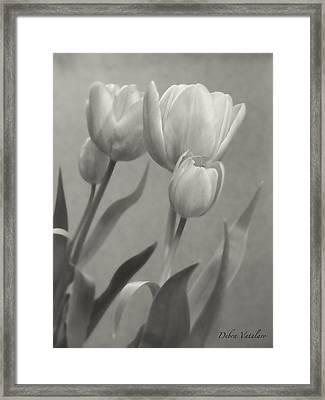 The Mirror Tulips Framed Print by Debra     Vatalaro