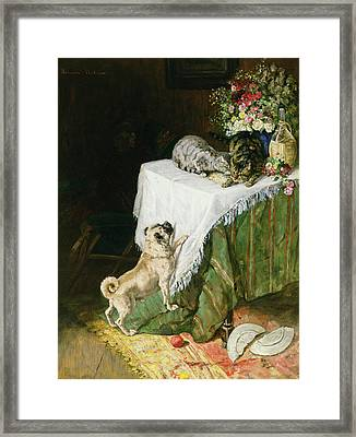 The Mischievous Tabbies Framed Print by Clemence Nielssen