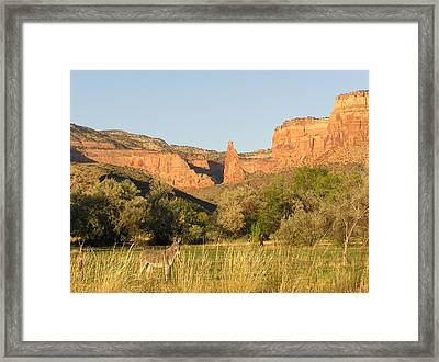The Mule And Independence Rock Framed Print