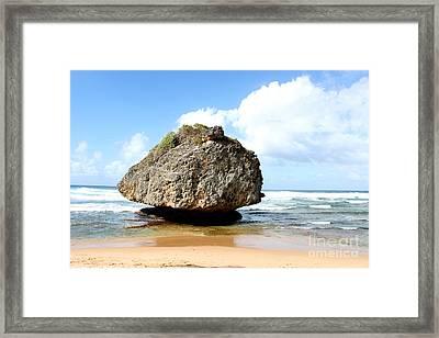 The Mushroom Rock 1 Framed Print