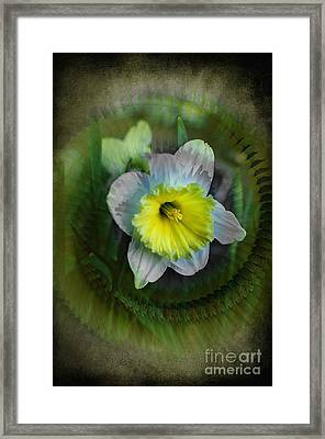 The Narcisstic Narcissus Framed Print by The Stone Age