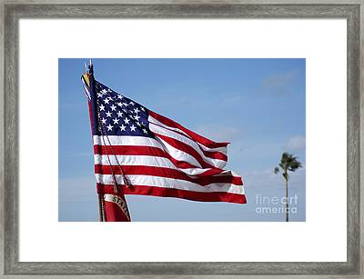 The National Colors And Official Colors Framed Print