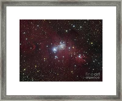 The Ngc 2264 Region Showing The Cone Framed Print by Filipe Alves