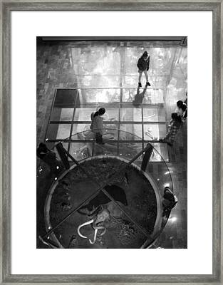 Framed Print featuring the photograph The Oculus by Lynn Palmer