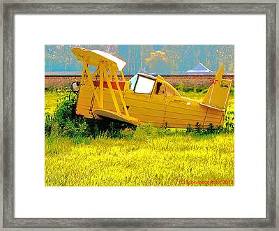 The Old Crop-duster Framed Print