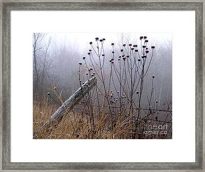 The Old Fence - Blue Misty Morning Framed Print