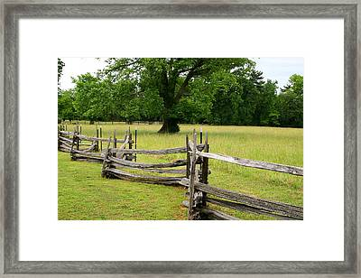 The Old Fence Framed Print by Valia Bradshaw