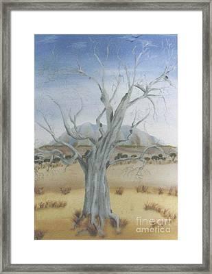 The Old Gum Tree Framed Print by Debra Piro