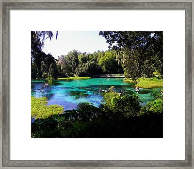 The Old Swimming Hole Framed Print by Judy Wanamaker