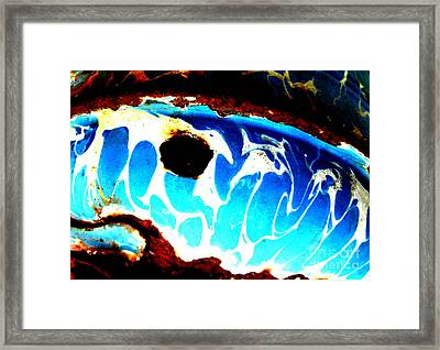 Framed Print featuring the photograph The Old Whale by Amy Sorrell