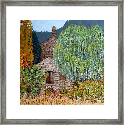 The Old Willow Tree Framed Print by Caroline Street
