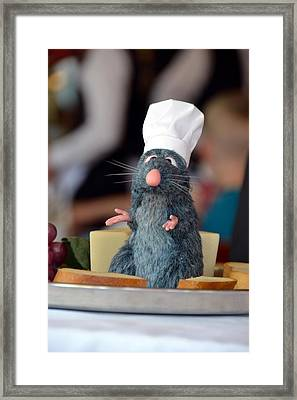 The Only Rat I Like Framed Print by Bonnie Myszka
