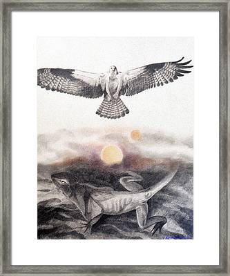 The Osprey And The Lizard Framed Print
