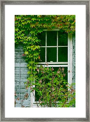 The Other Window Framed Print