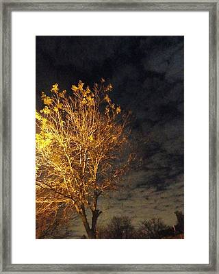 The Outcast Framed Print by Guy Ricketts