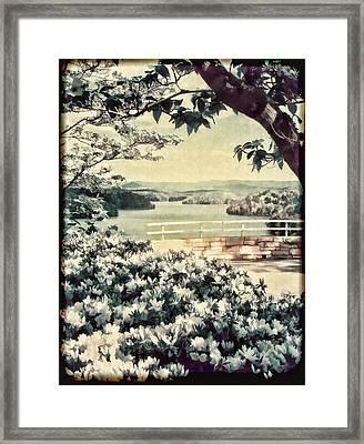 The Overlook Framed Print